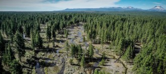 Watershed Restoration within the Deschutes National Forest