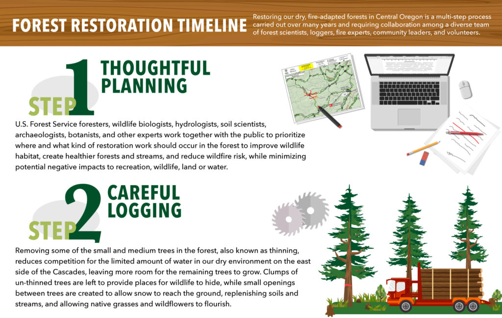 forest restoration timeline deschutes national forest