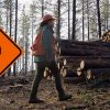 Temporary Trail Closures Deschutes National Forest