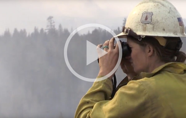 Fuels Reduction Slows Milli Fire