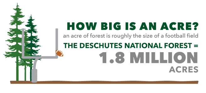 wildlife habitat restoration how big is the deschutes national forest