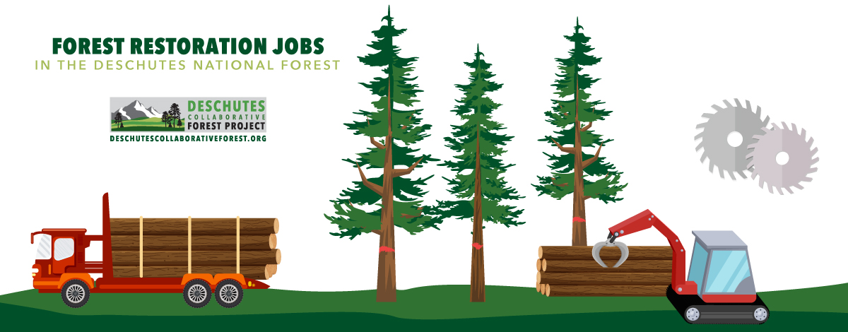 jobs created central oregon forest restoration