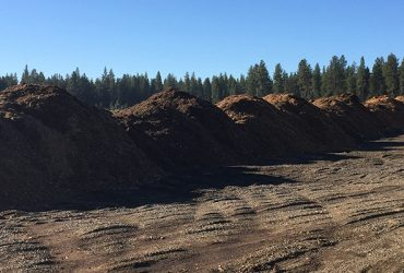 What is up with the Mulch Piles near Phil's Trailhead?