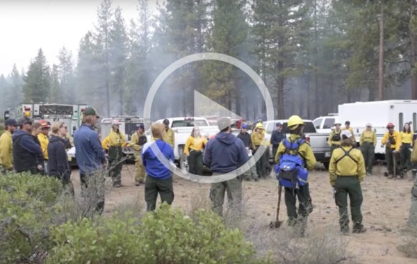 Restoration in a Fire Forest: The Benefits of Burning
