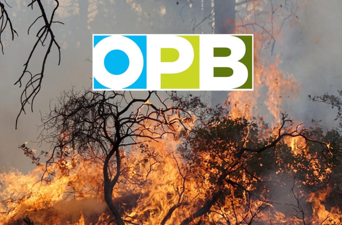 OPB visits prescribed burn near Sisters
